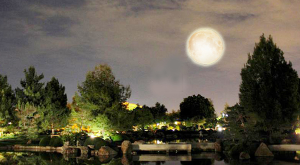 Phoenix Japanese Garden Moonviewing