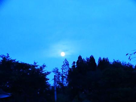 写真 6 = 陸前高田・普門寺の境内から見る。中秋の名月が昇る。